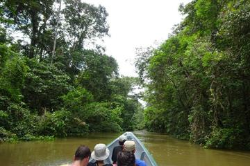 Cuyabeno 4 Day Jungle Tour