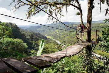 Mindo Rainforest With Zipline Upgrade From Quito