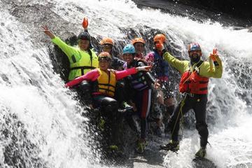 El Yunque Rainforest Wilderness Adventure