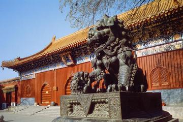 Beijing Day Tour: Hutong, Lama Temple, and Panda Zoo