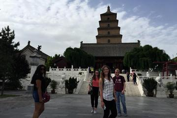 Private Tour of Shaanxi History Museum and Big Wild Goose Pagoda in Half Day