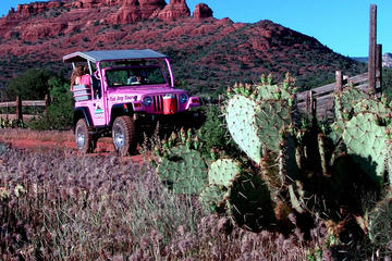Excursion en jeep à Diamonback Gulch au départ de Sedona