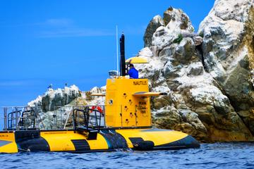 Catalina Island Semi-Submarine...