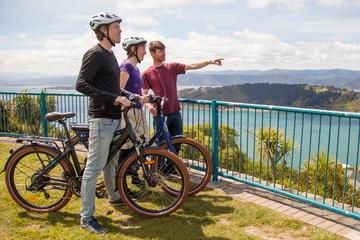Wellington Shore Excursion: Guided Sightseeing Tour by Electric Bike