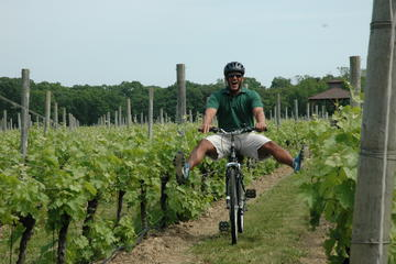 Day Trip Mattituck Bike Wine Country and Fruit Orchard Tour near Mattituck, New York