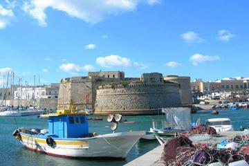 Private Tour: Gallipoli 2-Hour Guided Walking Tour
