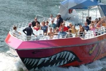 Boston Codzilla: émotions fortes en bateau