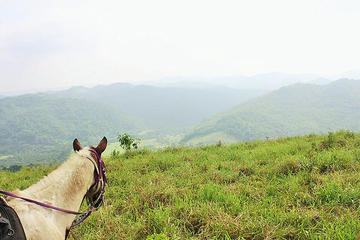 Horseback Riding to Flowers Camp Cave and Canoe Tour