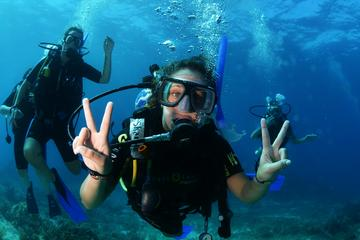 Advanced Open Water Diver Course in...