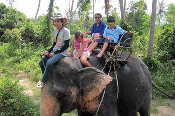 Private Geländesafari im Allradfahrzeug auf der Insel Samui
