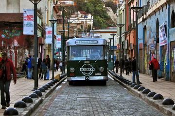Excursão particular: excursão por Viña del Mar e Valparaíso com...