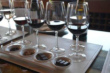 Excursão particular: Experiência por vinhas em Undurraga com...