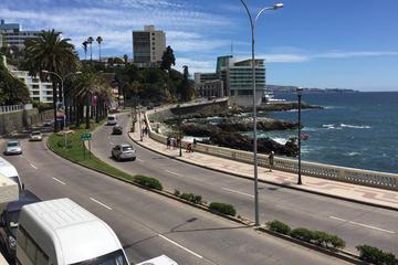 Excursión para grupos pequeños: Viña del Mar, Valparaíso y cata de...