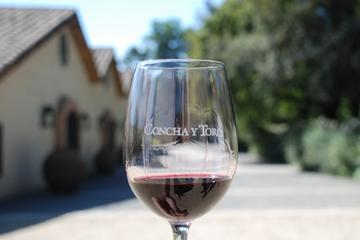 Half-Day Private Tour: Concha y Toro Vineyard