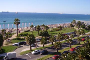 Small Group Best Deal: Viña del mar - Valparaiso - Casablanca Valley...