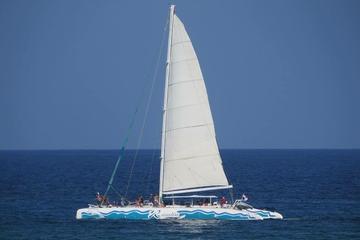 Excursion signature à PlayadelCarmen: plongée, cénotes et catamaran