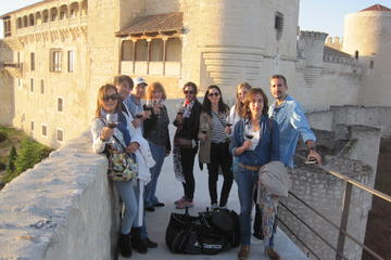 Wine Tour Adventure from Madrid
