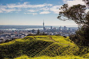 Cultural Walking Tour on Mount Eden