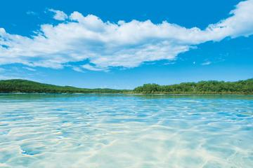 Get Offroad Ready: Fraser Island 4WD Course from Hervey Bay