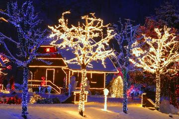 Cazma Christmas Fairytale Half Day Trip from Zagreb
