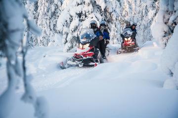 Full-Day Snowmobile Safari into the Lappish Wilderness in Rovaniemi