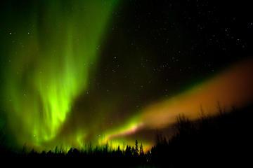 La excursión de las Luces Nórdicas...