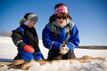 Laponie en Laponie Safari au Lac de...