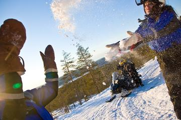 Lapland Snowmobile Tour from Rovaniemi