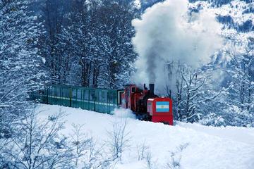 Billete para el tren del Fin del Mundo