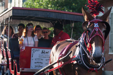 French Quarter Horse and Carriage...