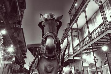 History and Haunts of New Orleans Carriage Tour
