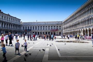 PRIVATE OVERVIEW OF VENICE