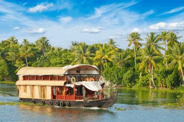Private Tour Kerala Backwaters Houseboat Day Trip including Lunch