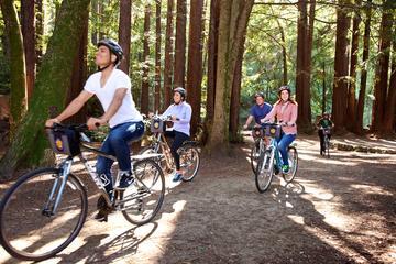 San Francisco unabhängige Fahrradtour mit Vermietung