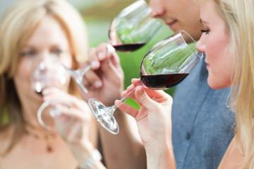 Full-Day Niagara Wine Tour and...