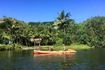 Guided Kayak Adventure on the Wailua...