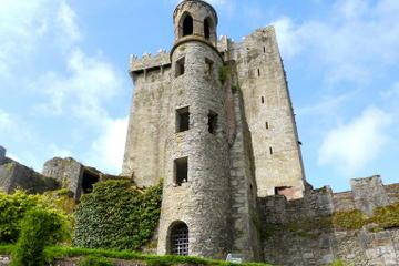Cork og Blarney Castle, med tog fra Dublin