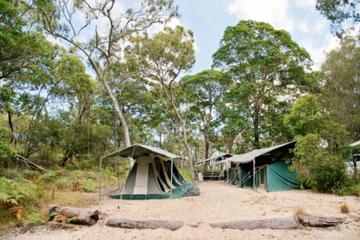 Tour de 2jours à l'île Moreton en camping et x4 au départ de...