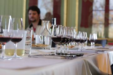 Experiência sofisticada de degustação de vinho em Mendoza