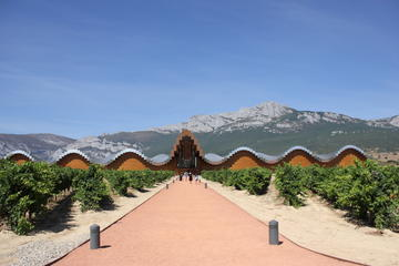 Rioja Wineries Tour from San...