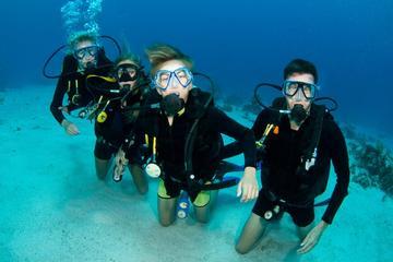 Scubaduiken op Sint-Maarten voor gecertificeerde duikers