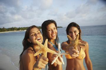 Viagem de meio dia à Sand Dollar com Snorkel