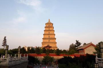 Half-Day Private City Tour of Shaanxi History Museum and Big Wild Goose Pagoda