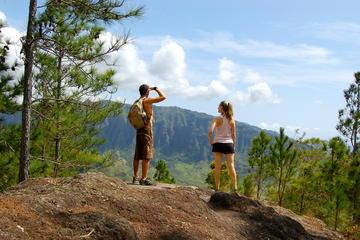 オアフ島熱帯雨林ハイキング体験