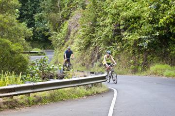 Aventure descente à vélo à Oahu avec randonnée facultative