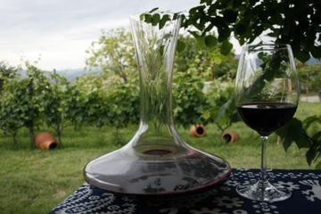 1 Day Wine Tour in Kakheti Region