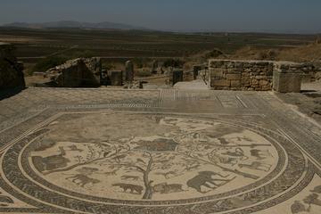 Meknès and Roman Ruins of Volubilis...