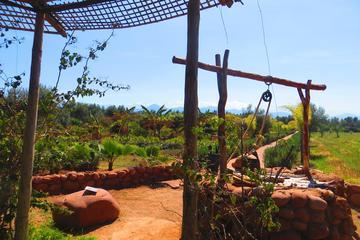 Privater geführter Tagesausflug in das Ourika-Tal