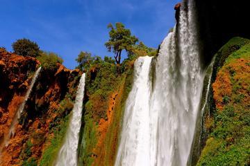 Privater Tagesausflug: Ouzoud-Wasserfälle von Marrakesch aus