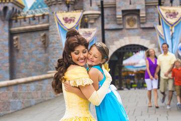 Billet 2jours à Disneyland Resort